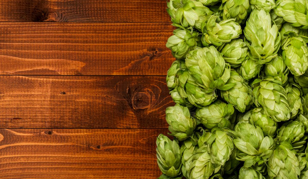 4 Common Beer Flavors Defined